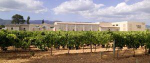 Wijncursus op Mallorca