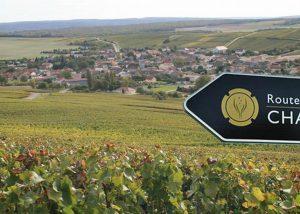Wijnreis Chablis en Champagne