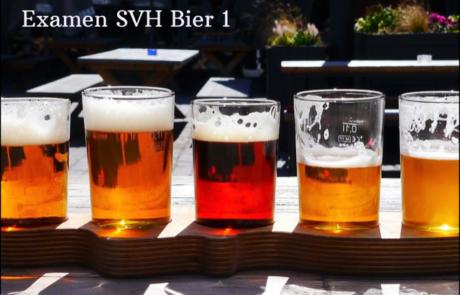 Examen SVH Bier 1